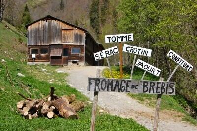la-lechere-producteurs-terroir-locaux