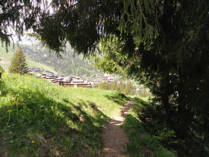 Parcours VTT cross-country noir Tête à l'Envers